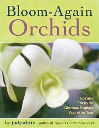 Bloom-Again Orchids Book by judywhite Stock Images