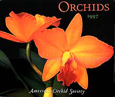 Orchid Calendar by judywhite