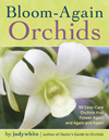 Bloom Again Orchids by judywhite