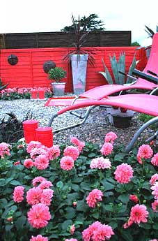 Garden Photo Of The Week By Judywhite At Gardenphotos Com